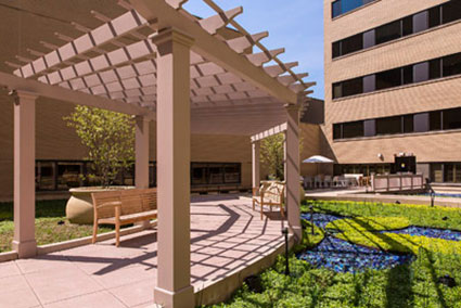 Karmanos Center For Natural Birth Opens Rooftop Garden - DBusiness
