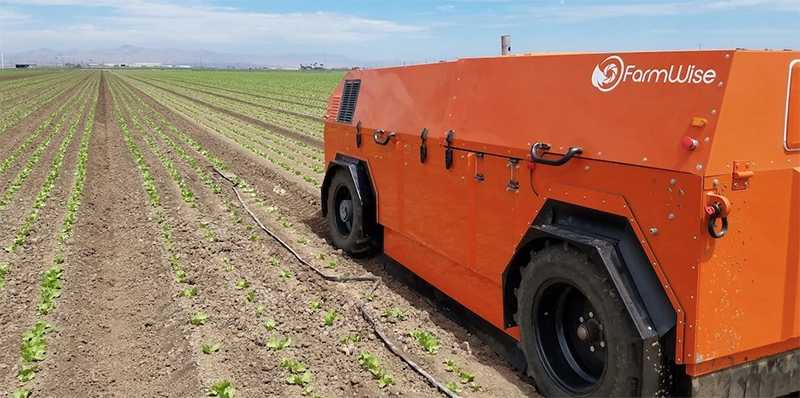 Roush FarmWise vegetable weeder