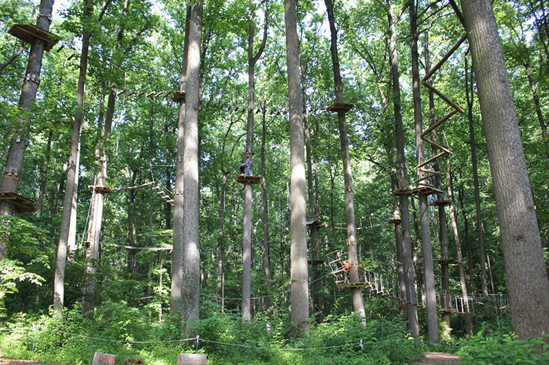 TreeRunner Adventure Park at Oakland University