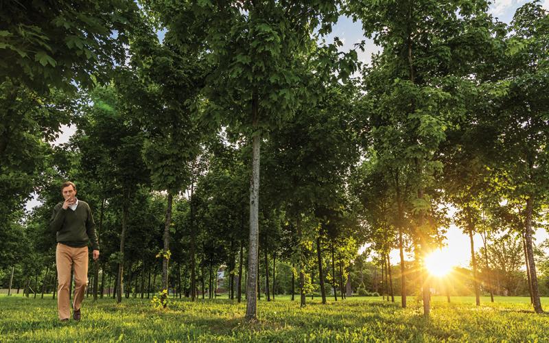 John Hantz with trees